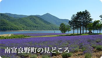 kankou_b01